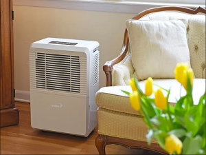 Top Best Dehumidifiers