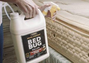 Top Best Bed Bug Killer Spray 2020