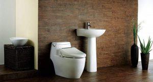 Top Best Bidet Toilet Seat 2020