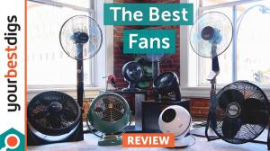 Top Best Fans 2020
