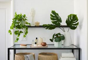 Top Best Faux Plants 2020 2