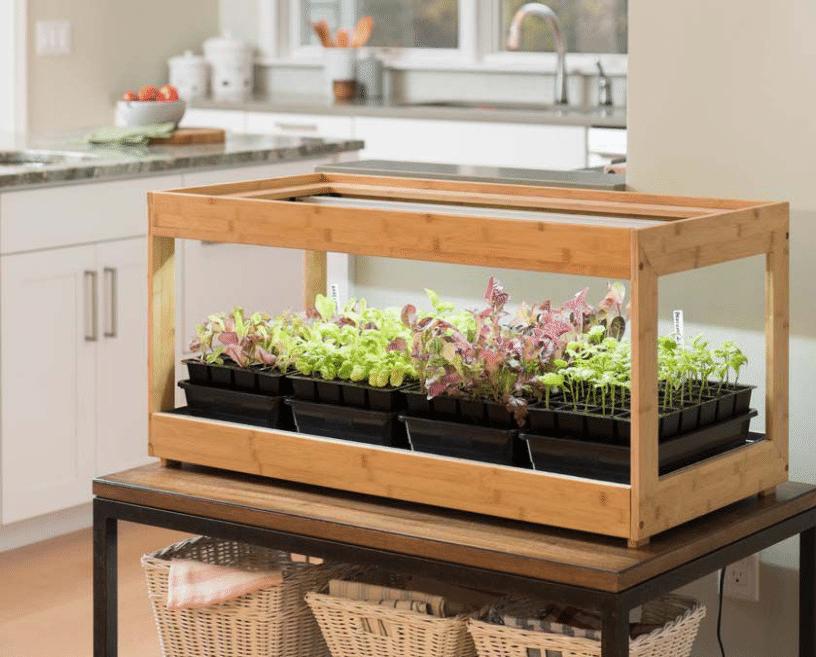 Top Best Grow Lights For Indoor Plants 2020